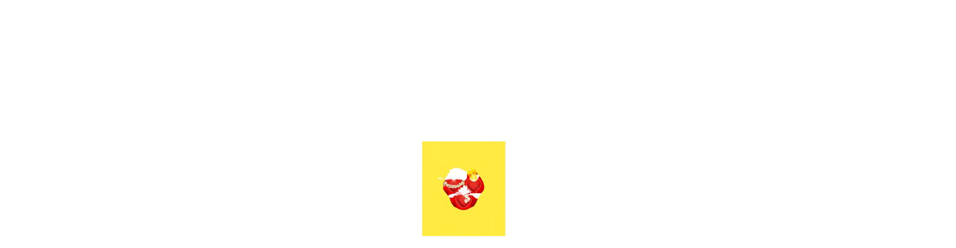 estrela-esp.png