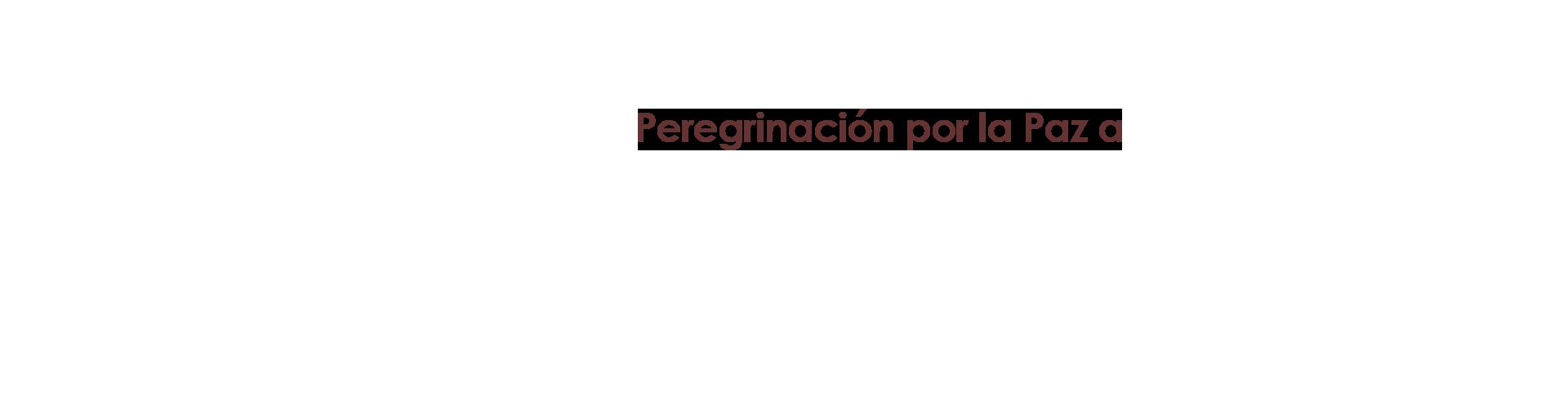 web_subtitulo_esp.png
